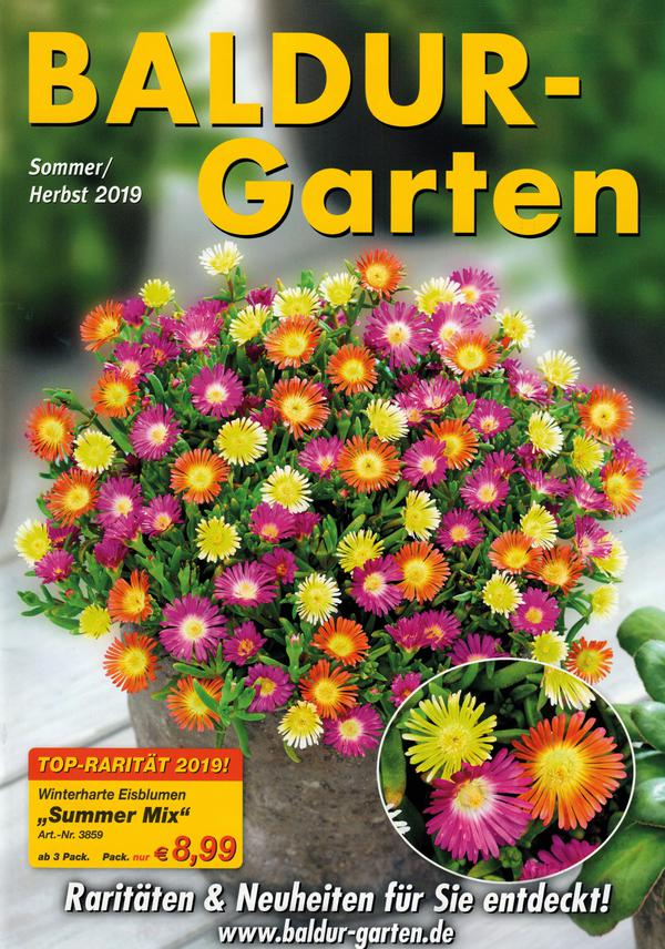 Www.Baldur-Garten.At Katalog